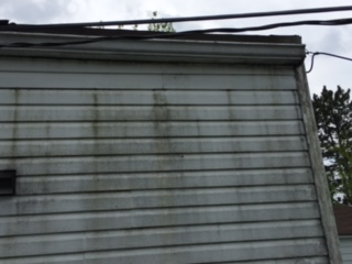 Siding covered in algae, mold & dirt. BEFORE Refresh